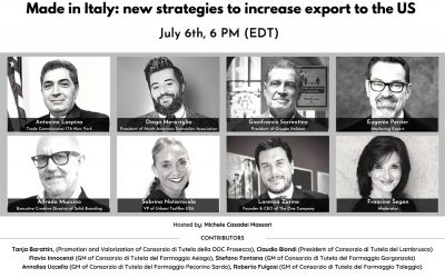 Made in Italy: new strategies to increase export to the US